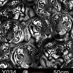 GWR017_head_of_tiger(1)